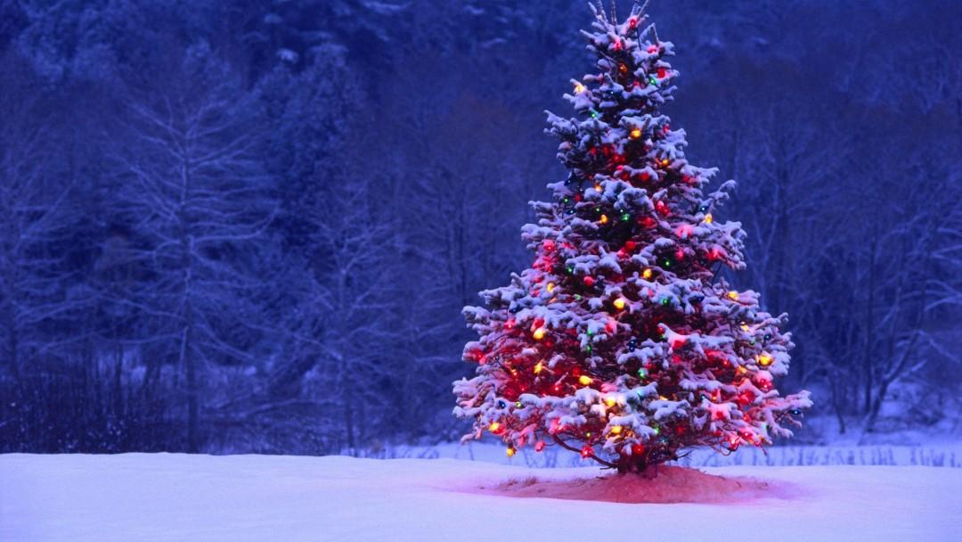 26 - 31 Aralık Haftalık Burç Yorumları