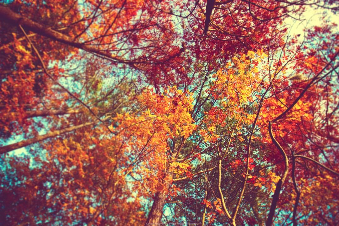 30 Ekim - 5 Kasım Haftalık Burç Yorumları- Hande Kazanova