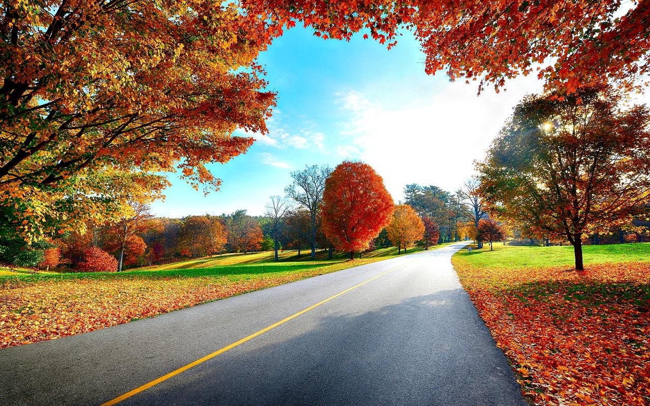 12 - 18 Kasım Haftalık Burç Yorumları - Hande Kazanova