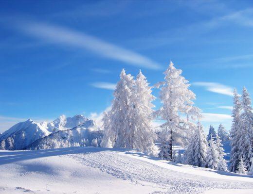 10 - 16 Aralık Haftalık Burç Yorumları - Hande Kazanova