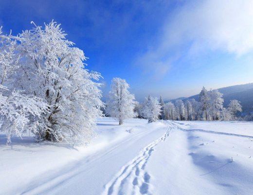 14 - 20 Ocak Haftalık Burç Yorumları - Hande Kazanova