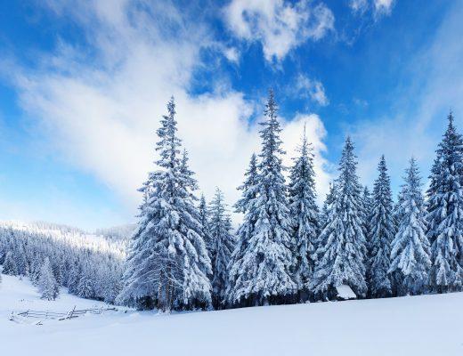 21 - 27 Ocak Haftalık Burç Yorumları - Hande Kazanova